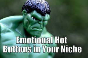Emotional Hot Buttons in Your Niche