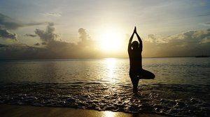 Yoga and Flexibility eCourse